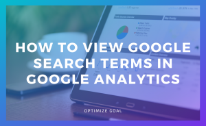 Google Search Terms in Google Analytics